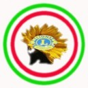 Tutto Lions Italy